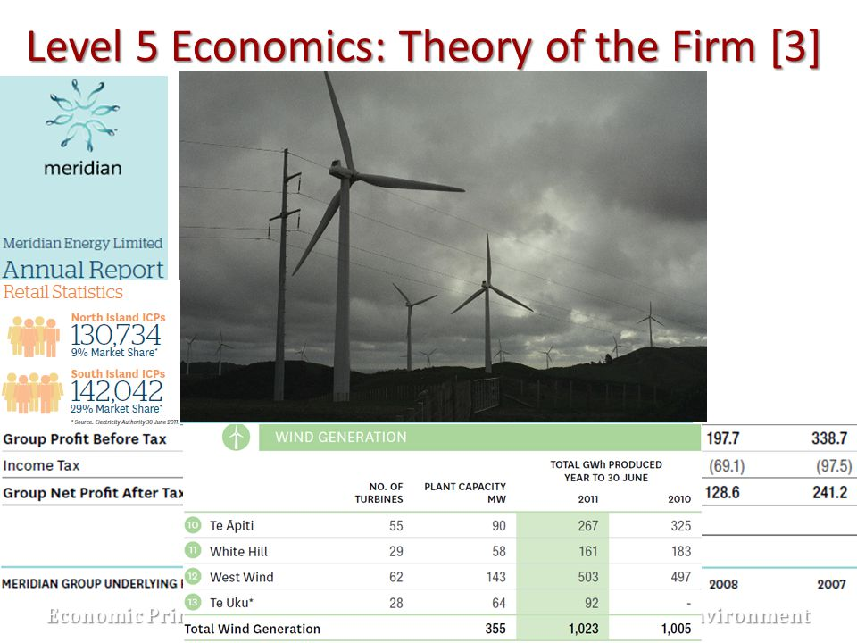 Level 5 Economics: Theory of the Firm [3]